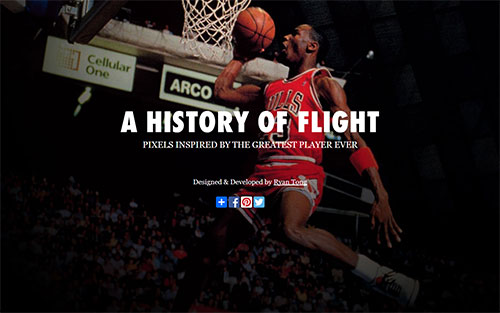 A History of Flight
